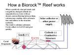how a biorock reef works