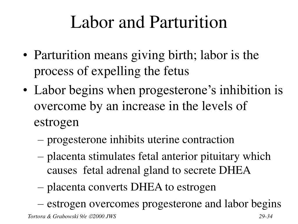 Labor and Parturition