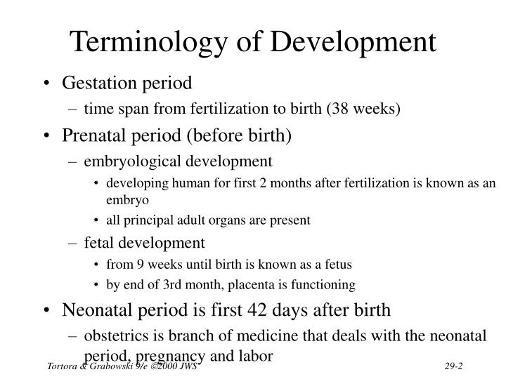 Terminology of development