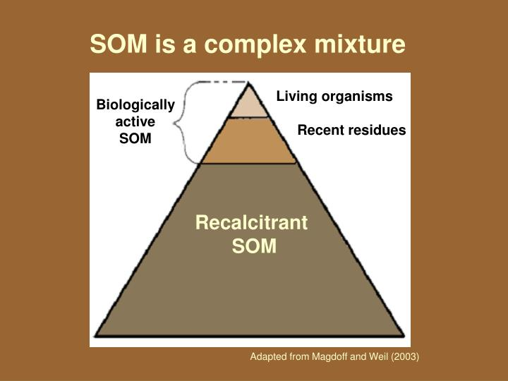 SOM is a complex mixture