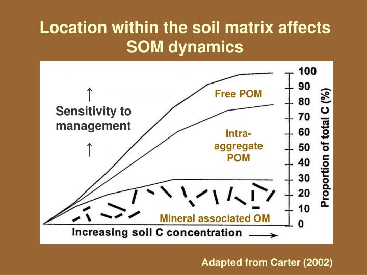 Location within the soil matrix affects SOM dynamics