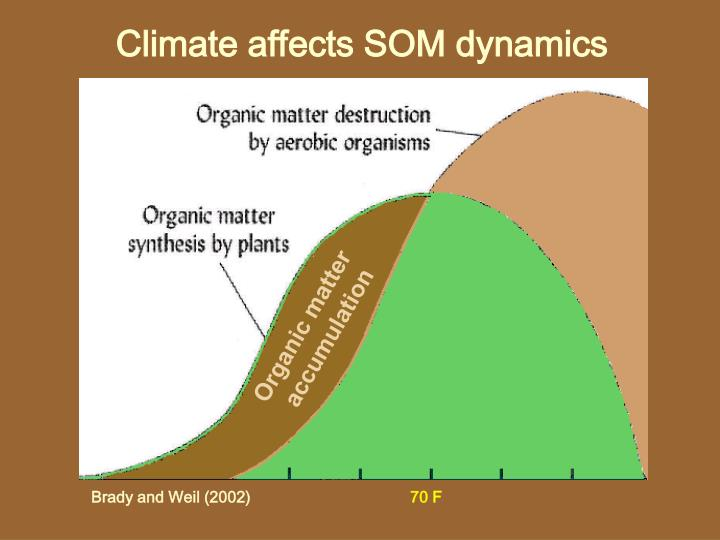 Climate affects SOM dynamics