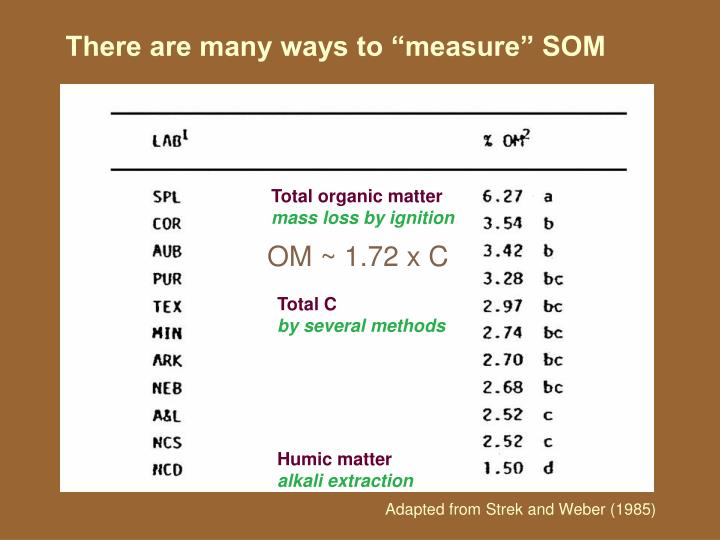 "There are many ways to ""measure"" SOM"