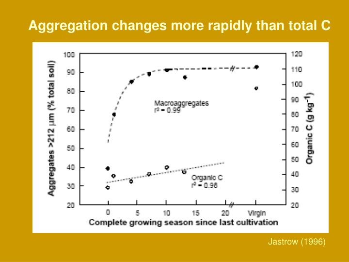 Aggregation changes more rapidly than total C
