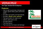 veracruz turf type seeded bermudagrass