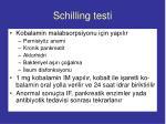schilling testi
