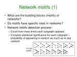 network motifs 1