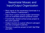 neostriatal mosaic and input output organization