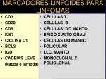 marcadores linf ides para linfomas