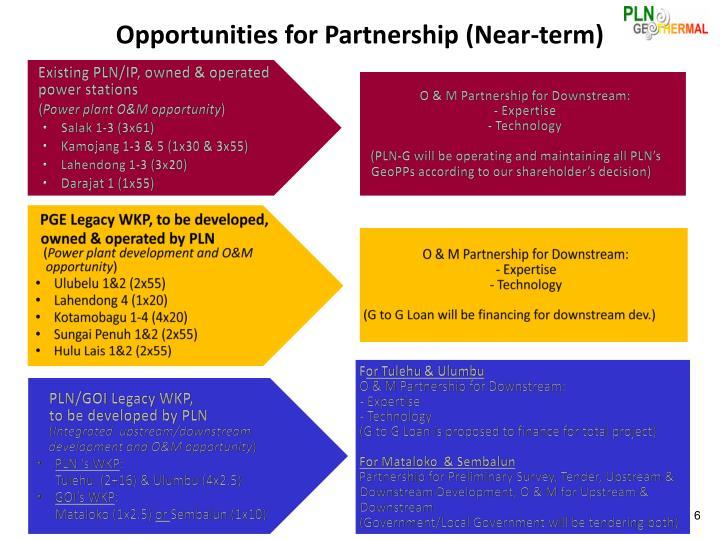 Opportunities for Partnership (Near-term)