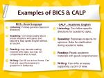 examples of bics calp
