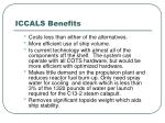 iccals benefits8