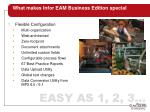 what makes infor eam business edition special