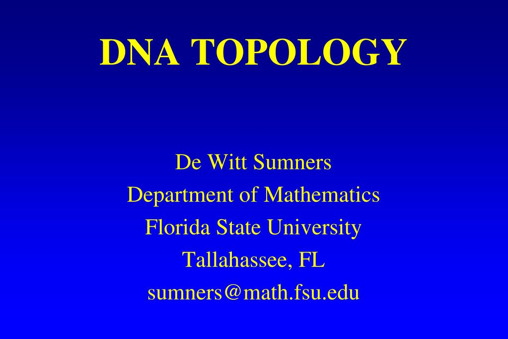 dna topology l.