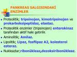 pankreas salgisindak enz mler