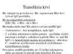 transf zia krvi24