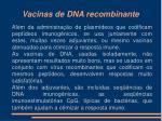 vacinas de dna recombinante10