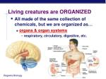 living creatures are organized4