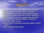 sorular33