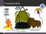 transition risk
