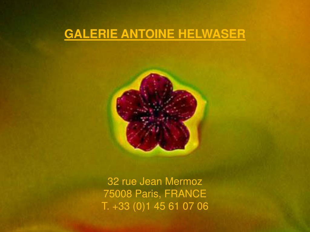 galerie antoine helwaser 32 rue jean mermoz 75008 paris france t 33 0 1 45 61 07 06 l.