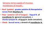 sensory nerve supply of mucous membrane of mouth