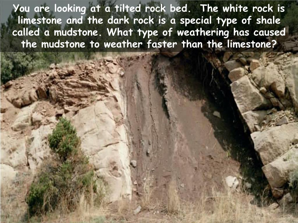 You are looking at a tilted rock bed.  The white rock is limestone and the dark rock is a special type of shale called a mudstone. What type of weathering has caused the mudstone to weather faster than the limestone?