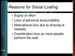 reasons for social loafing
