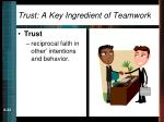 trust a key ingredient of teamwork