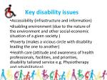 key disability issues