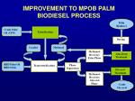 improvement to mpob palm biodiesel process