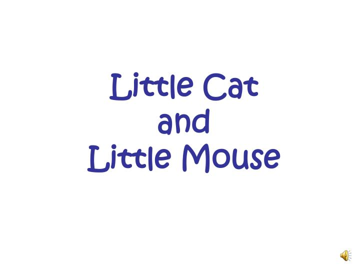 little cat and little mouse n.