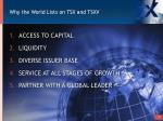 why the world lists on tsx and tsxv