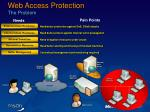 web access protection the problem