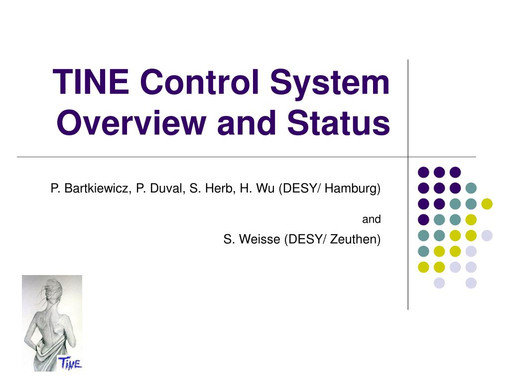 tine control system overview and status l.