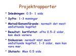 projektrapporter