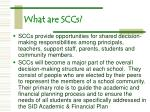 what are sccs