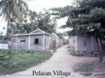pelican village