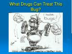 what drugs can treat this bug