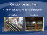 control de adultos