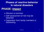 phase impact2