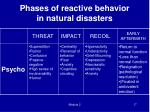 phases of reactive behavior in natural disasters2