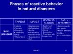 phases of reactive behavior in natural disasters3