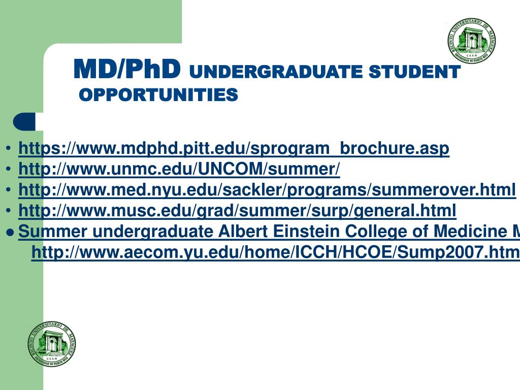 PPT - RESEARCH AND TRAINING OPPORTUNITIES FOR UNDERGRADUATE