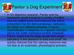 pavlov s dog experiment13