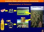 deforestation of amazon