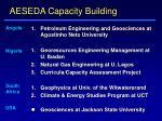 aeseda capacity building