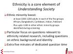 ethnicity is a core element of understanding society