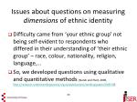 issues about questions on measuring dimensions of ethnic identity