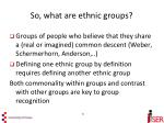 so what are ethnic groups